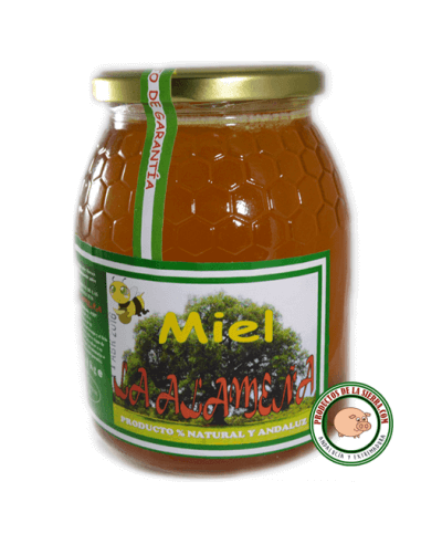 Miel de Azahar artesana La Alameña