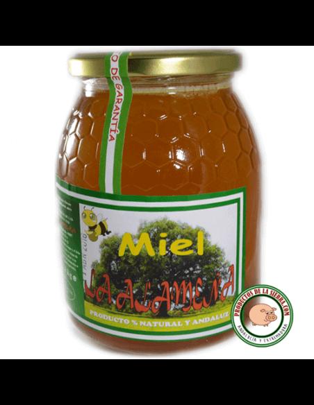 Orange blossom honey from Seville